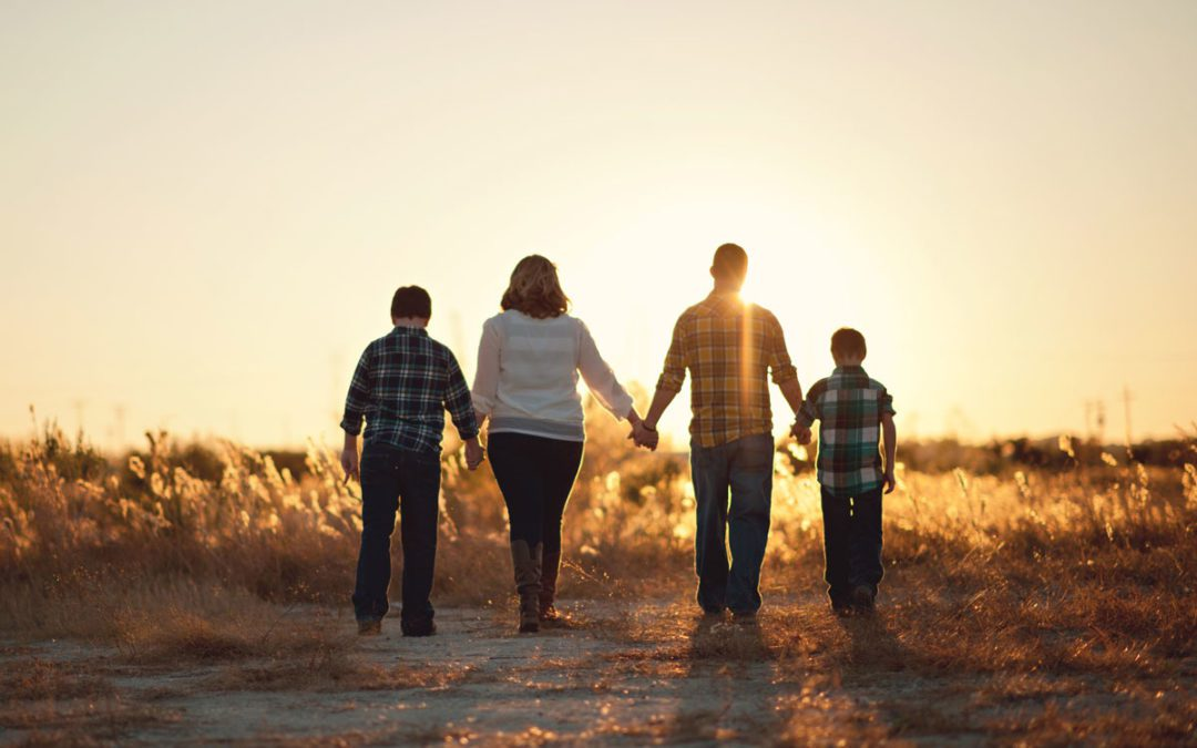 UNDERSTANDING DOMESTIC AND FAMILY VIOLENCE